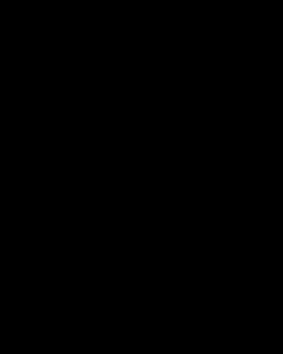 FIORELLA Standard Profile Arch Top 3/4's Lite Decorative Glass Double Iron Door -FIORELLA OID-6080-FIO1PAT